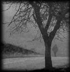 misty moment 2