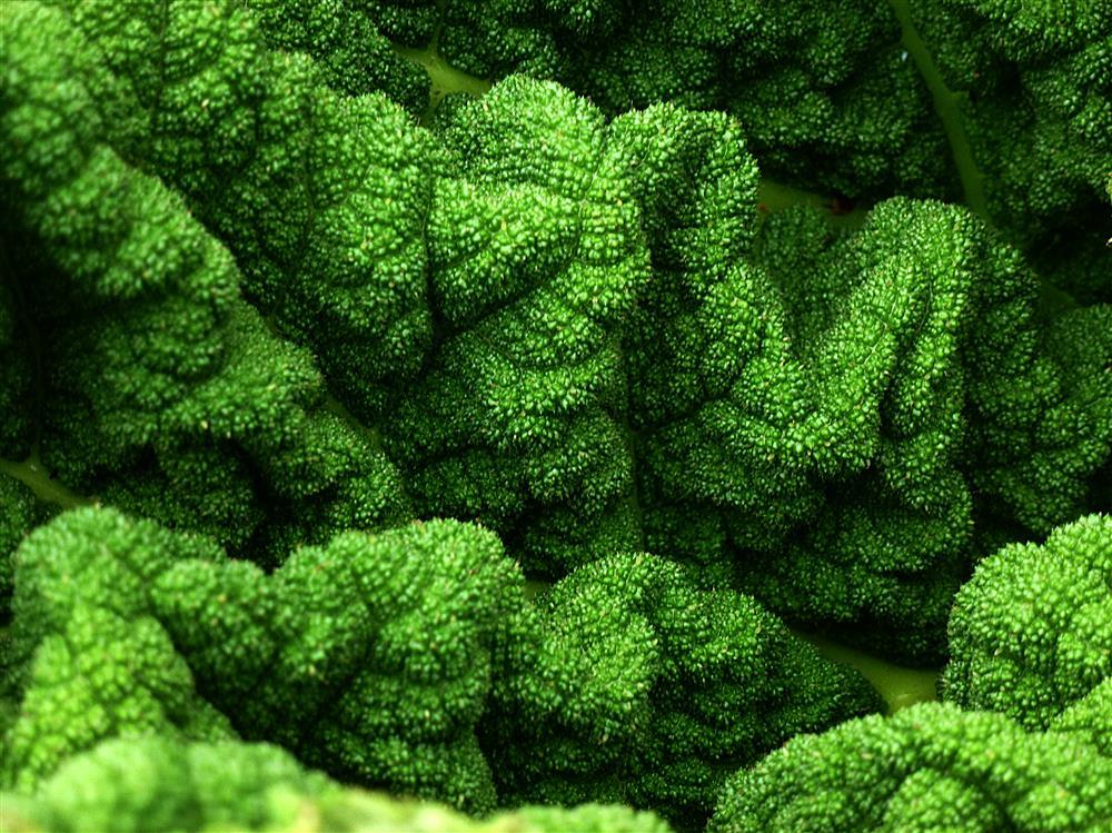 green stuff by awjay