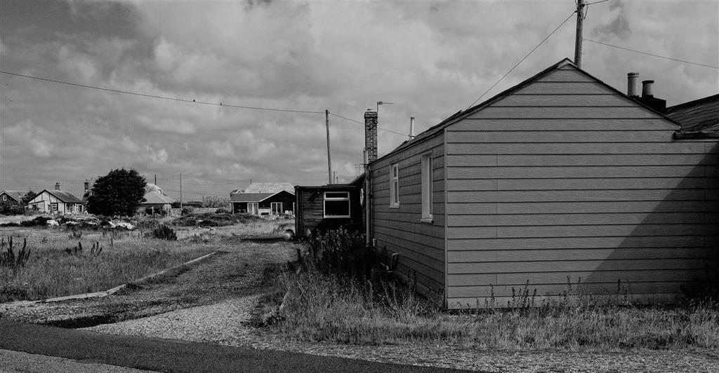 dungeness life by awjay