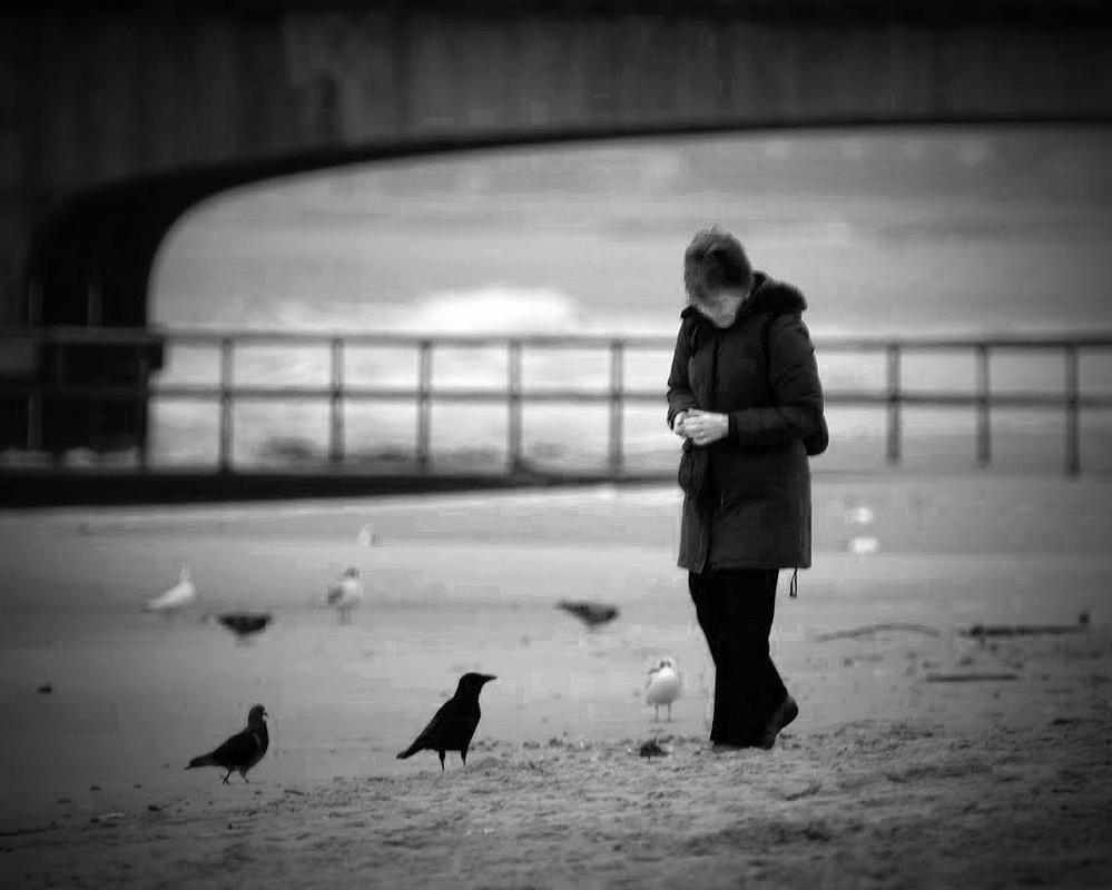 amongst the birds by awjay