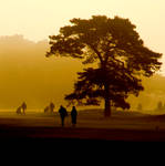 walkers on the links