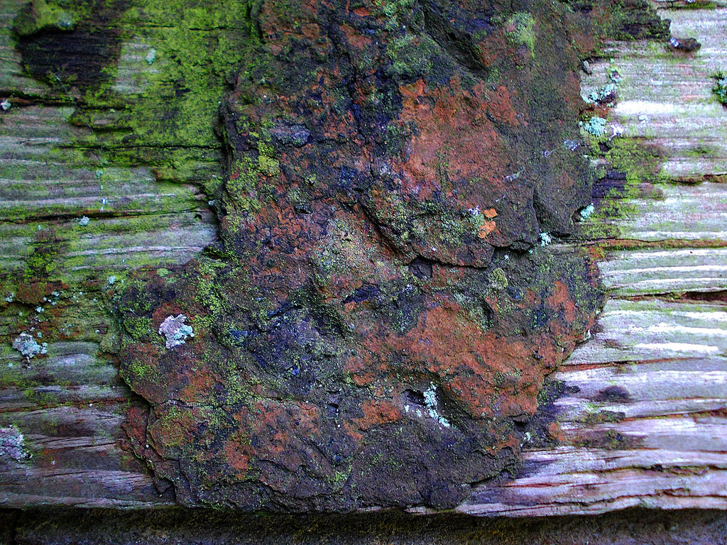 rust on wood by awjay