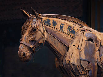 war horse by awjay