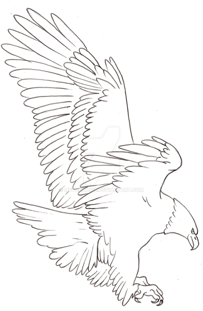 Eagle Tattoo Line Drawing : Eagle tattoo by metacharis on deviantart