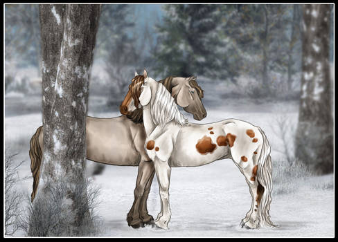 A Snowy Meeting