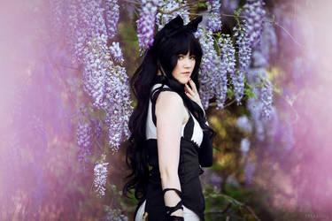 RWBY: Black Cat