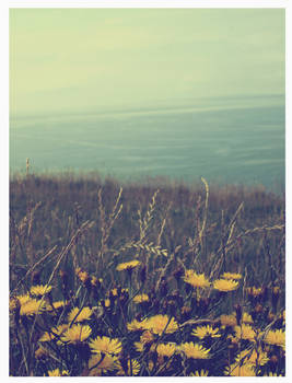 the cliffs of moher - vintage