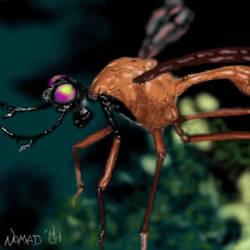 Antlered fruit fly