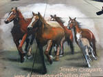3D Horse Stampede in Wyoming