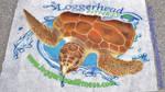 Turtlefest 1
