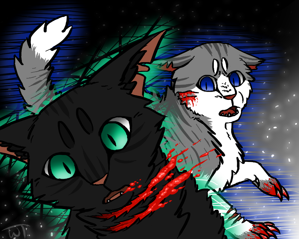 Stars did us wrong (Hollyleaf and Ivypool) by wolftail1999