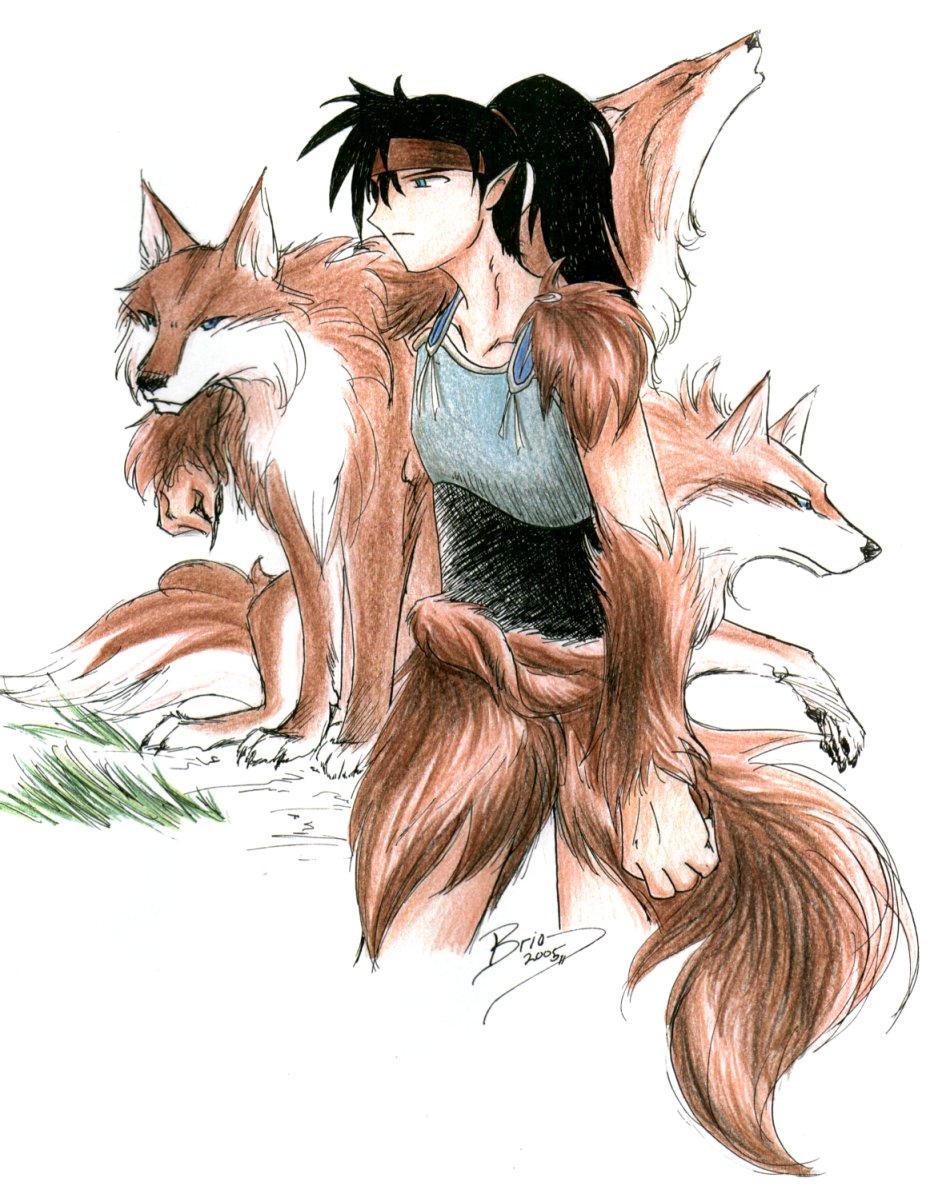 Inuyasha And Koga +inuyasha+ koga, pack leader