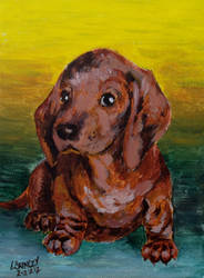 Dachshund (on a special day) by JudLorin