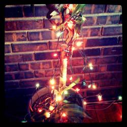 Banana Palm Christmas by AliceGraphix