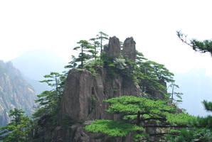 huangshan 1.7 by meihua-stock