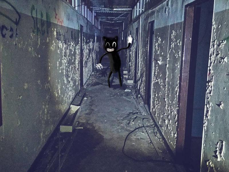Cartoon cat found