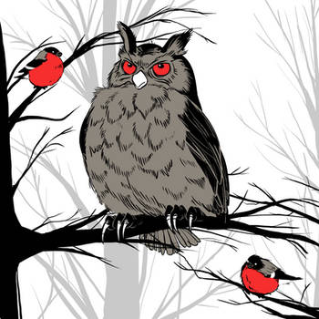 Owls 'n Finks