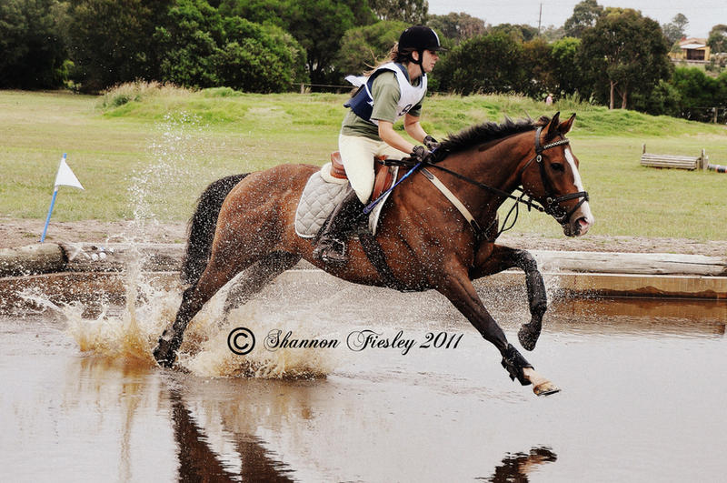 Splash... by silhouette-equus