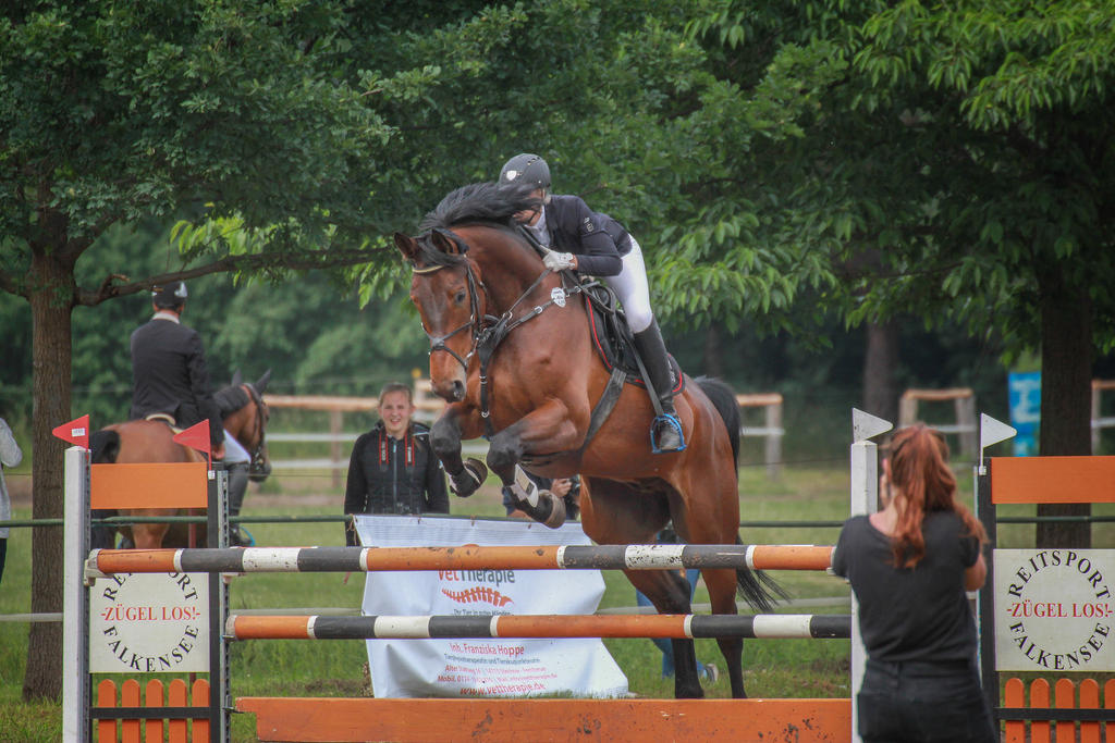 Jumping Stock 030 by TARSKYN