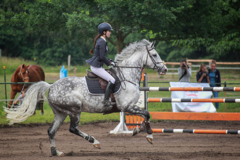 Jumping Stock 035 by TARSKYN