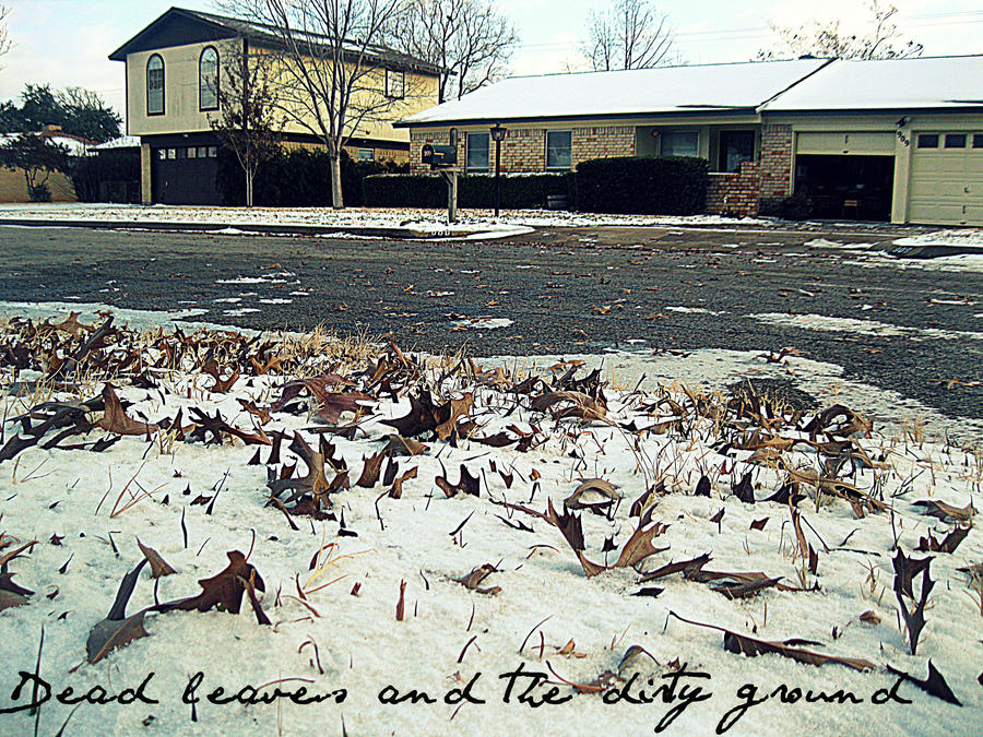 Dead Leaves, Dirty Ground by and-we-danced13