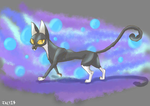A cat named Deja Vu