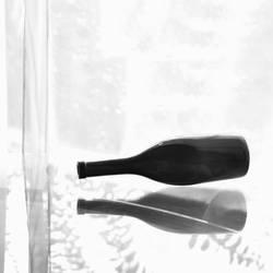 empty bottle by EliyaLightBay