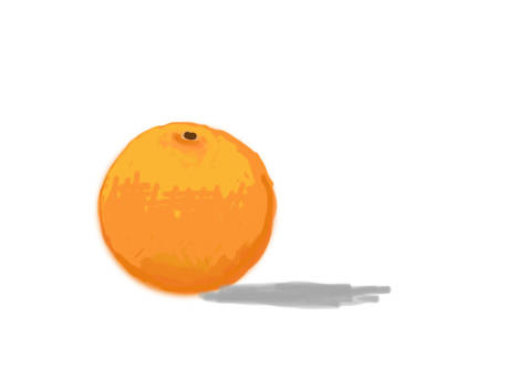 SKETCH A FRUIT