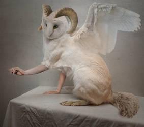 Owl-cat creature