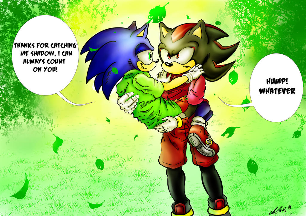 Thanks for catching me Shadow. by zeldalegends4525