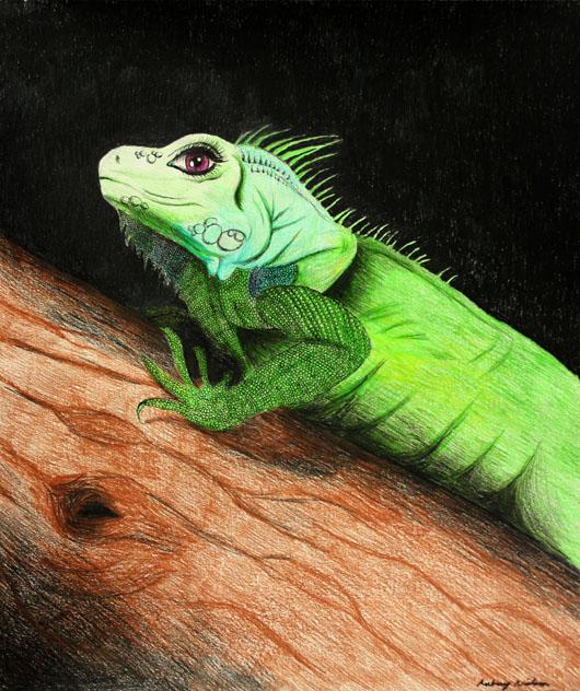 iguana eye painting - photo #25