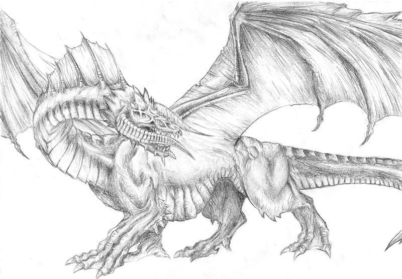 Black Dragon by TeraMaster