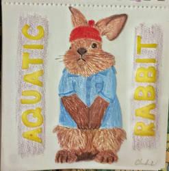 The Life Aquatic Rabbit