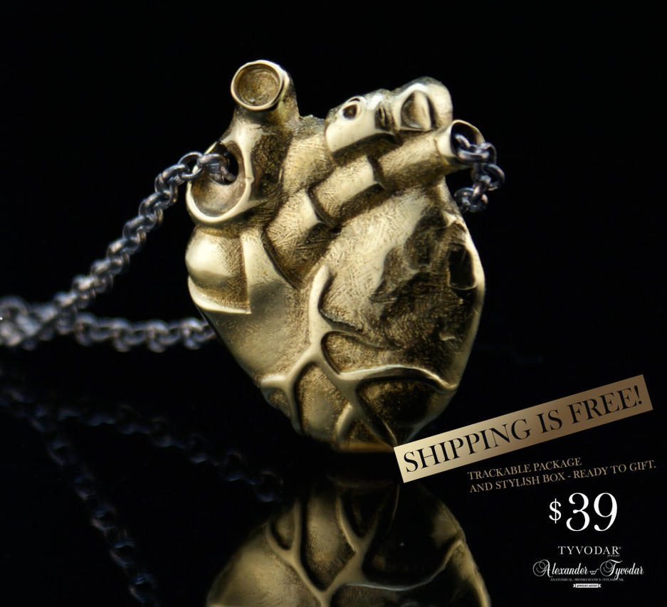 Anatomy Of Pectus Necklace Heart Anatomical He By Tivodar66 On
