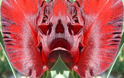 bat flower by Deborah-Valentine