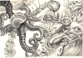 Octopus's Garden by Deborah-Valentine