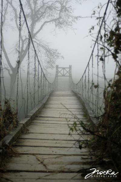 The Bridge by no0ra