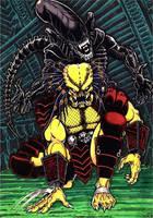 Alien Vs Predator by wobblyone