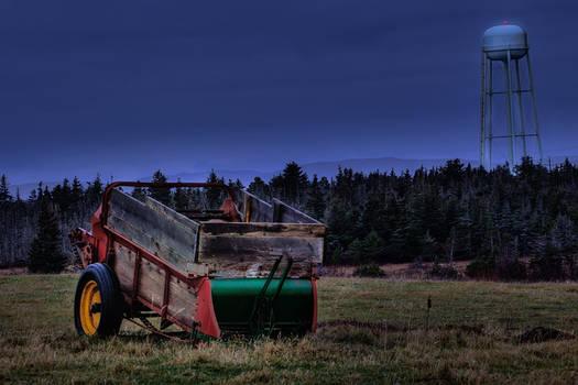 Early Morning Field