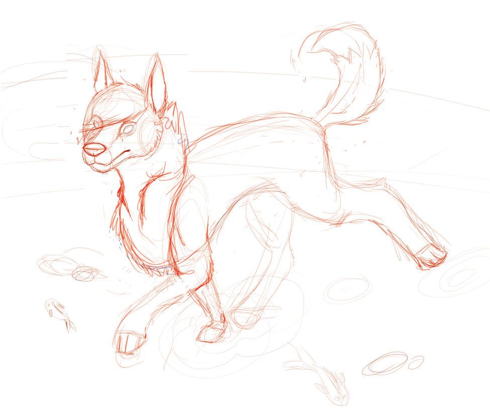 Water dog sketsh by iris-toby