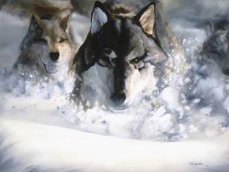 Wolf Run by Amadhi