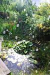 Bubbe Pond