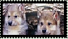[Stamp3] A tiny wolves by SweetStar990