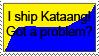 Kataang-Got a problem by irishgal487
