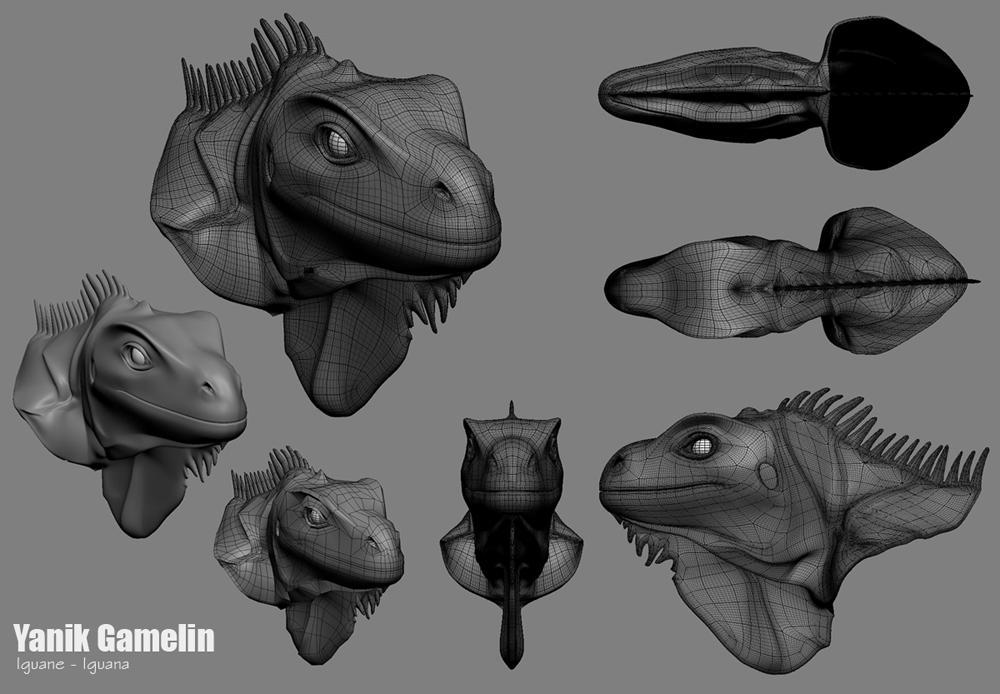 Iguana Head by Nic-animator