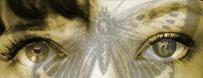 Shy Butterfly Banner by AwakeningAutumn