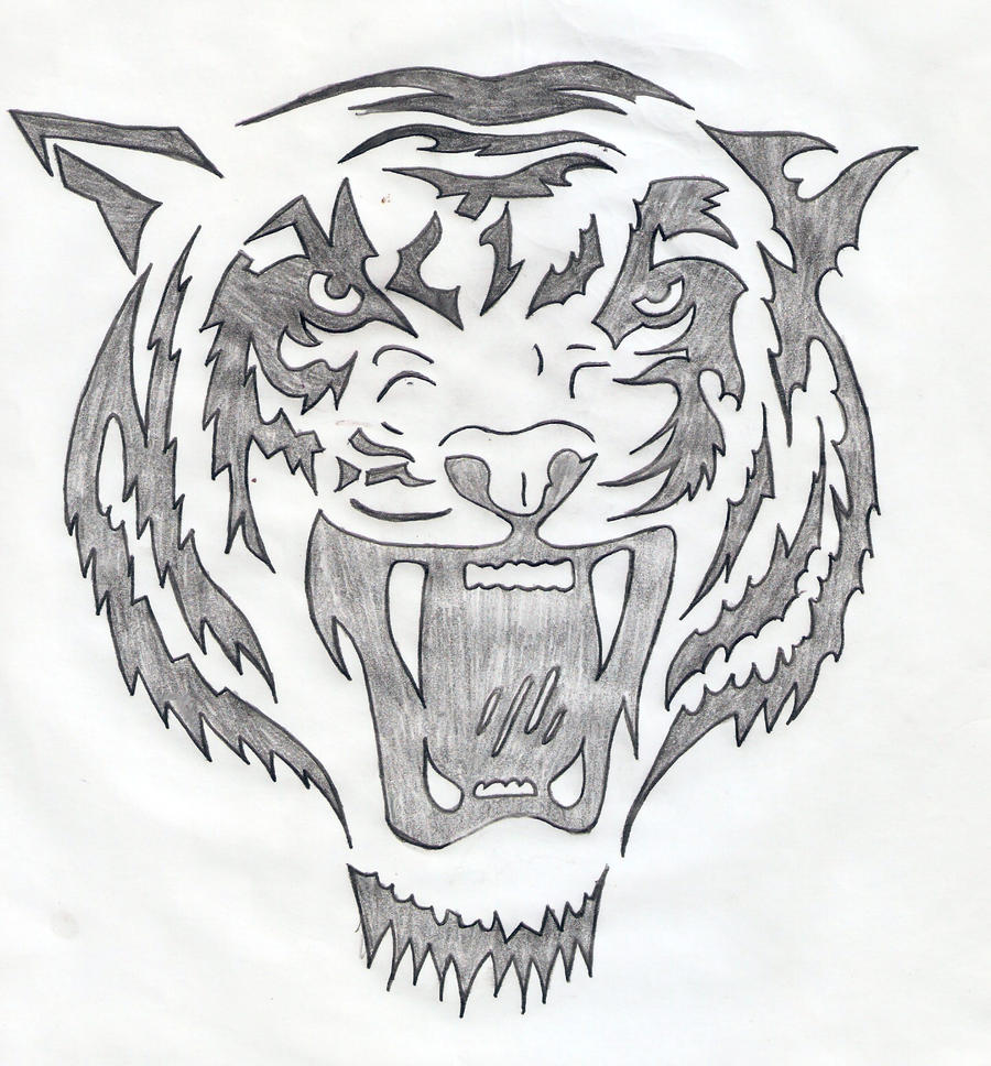 Tiger head 1 by pitic21 on DeviantArt
