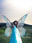 Flower Meadow Fairy