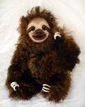Moreno the Sloth