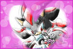 Shadow and shadow chao